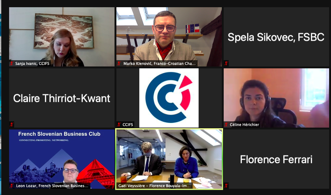 Online round table: 3 French Ambassadors from Croatia, Slovenia and Serbia
